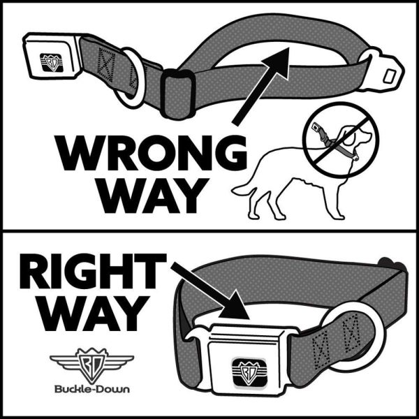Buckle-Down Minnie Mouse Dog Collar - Collars - Xtra Dog