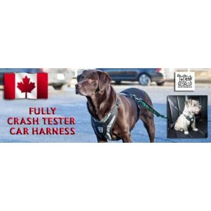 Canine Friendly Crash Tested Car Harness