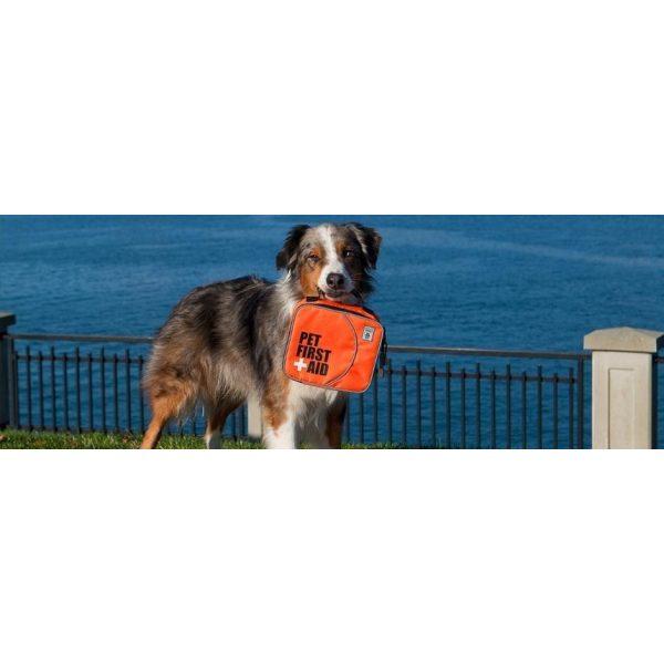 Canine Friendly Pet First Aid Kit - Discontinued - Xtra Dog