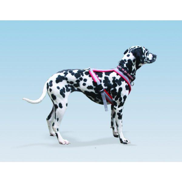 Custom Fit Foam Zima Multi-sport Harness Foam - Harnesses - Xtra Dog