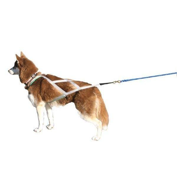 Custom Fit Zima X-Back Harness Foam - Harnesses - Xtra Dog