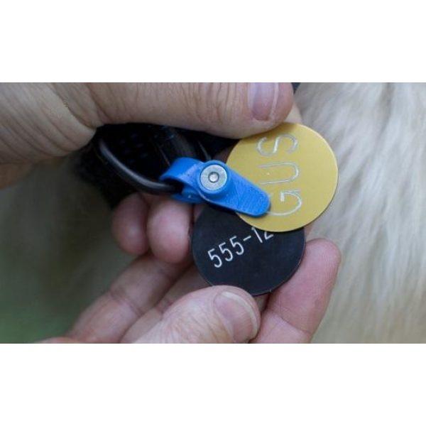 Freeze Tag Blue - Dog Tags - Xtra Dog