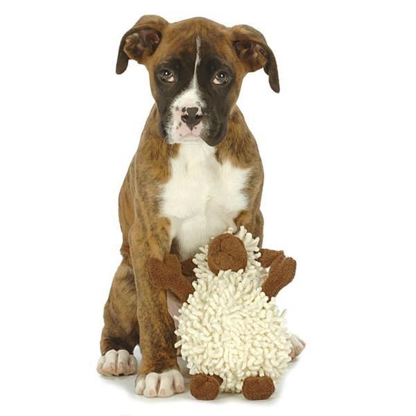 goDog FuzzyWuzzy Lamb with Chew Guard Technology (Small) - Plush Toys - Xtra Dog