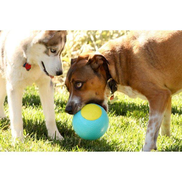 goDog RhinoPlay Beast - Retrieve Toys - Xtra Dog