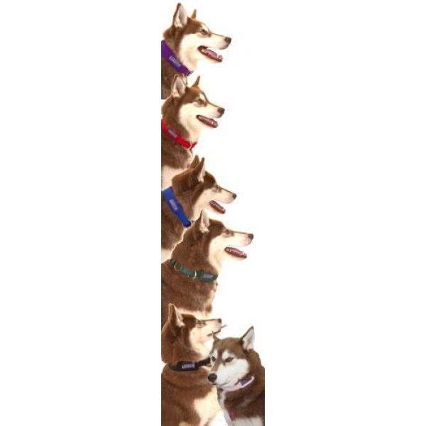 Limited Slip Fleece Collar - Collars - Xtra Dog