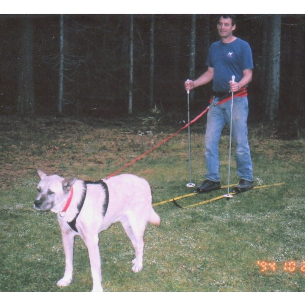 Scootering, Sledding, Cani-X and Bikejoring lines - Lines - Xtra Dog