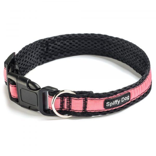 Spiffy Dog, Black Pink Collar - Collars - Xtra Dog