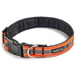 Spiffy Dog, High Visibility Collar