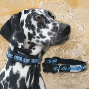 Spiffy Dog, Navy Waves Collar