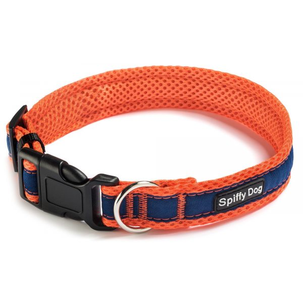 Spiffy Dog, Orange Blue Collar - Collars - Xtra Dog