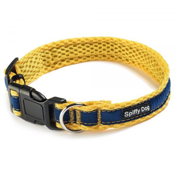 Spiffy Dog, Yellow Blue Collar - Collars - Xtra Dog