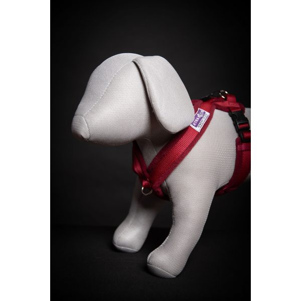 Xtra Dog Fleece Walking Harness - Harnesses - Xtra Dog